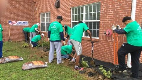 CCD volunteers planting flowerbeds