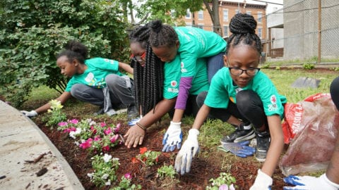 Comcast Cares Day volunteers work on a garden